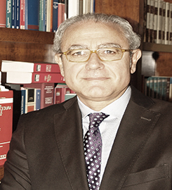 Avv. Giulio Guarnieri